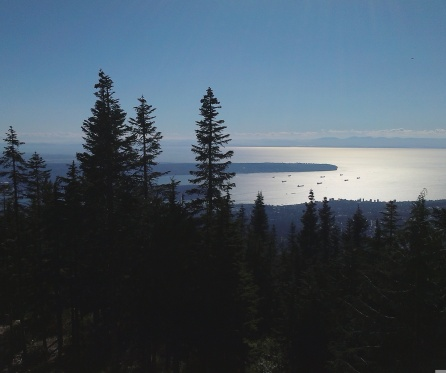 View of campus from Grouse Mountain